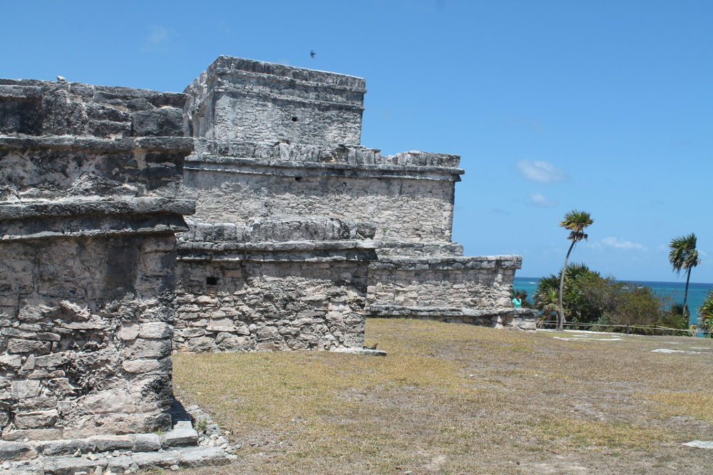 The Mayan ruins, a great way to escape the seaweed in Tulum, Mexico