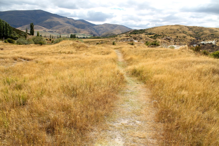 Hiking track St Bathans, New Zealand