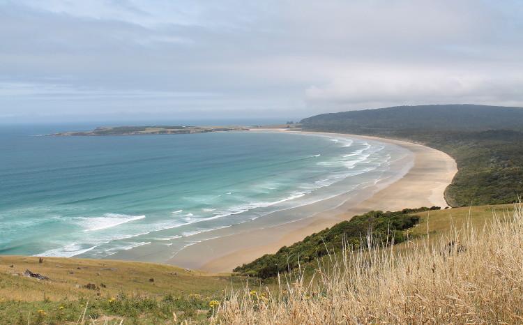 The Catlins: New Zealand's Rugged Coastal Paradise