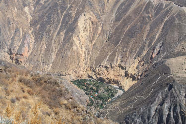 The 2 day Colca Canyon Trek, Peru: The oasis