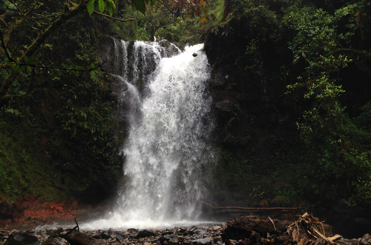 Cloud forest hiking in Boquete, Panama: The Lost Waterfalls