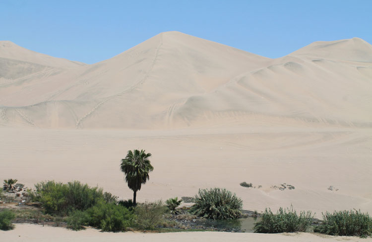 sand-dune-walking-huacachina-peru
