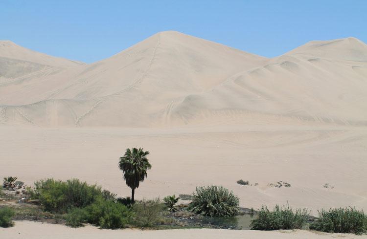 sand-dune-walking-huacachina-peru