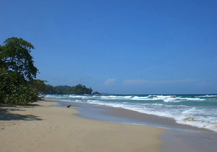 Best beaches in Central America - Red Frog Beach, Panama