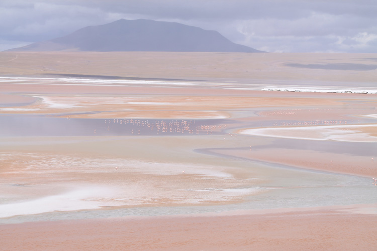 laguna-colorada-red-bolivia