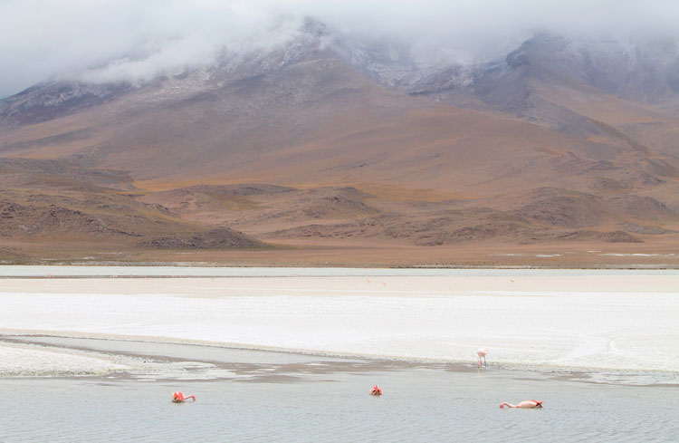 salty-lake-bolivia