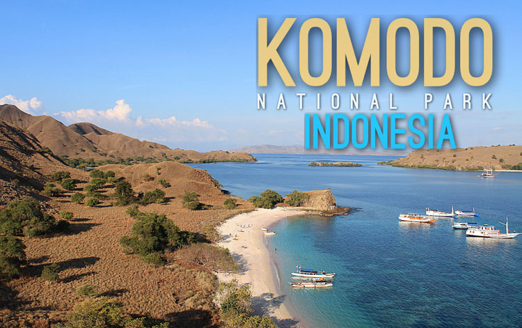 Planning a trip to Southeast Asia: Komodo National Park