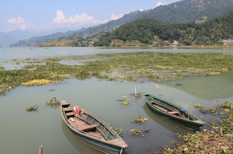 boats-phewa-lake-pokhara
