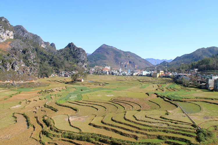 Hiking in Dong Van, Vietnam -- rice terraces from above