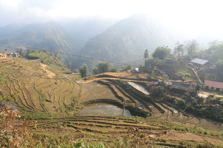 Visiting Sapa in winter -- rice terraces in northern Vietnam