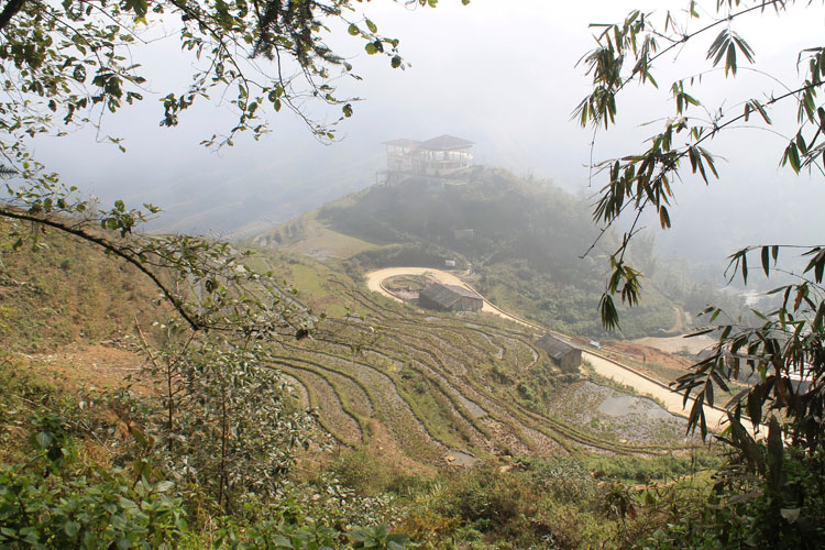 Backpacking in Vietnam: Rice fields in Sapa