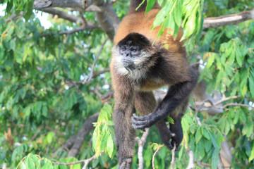 backpacking in Nicaragua -- Las Isletas