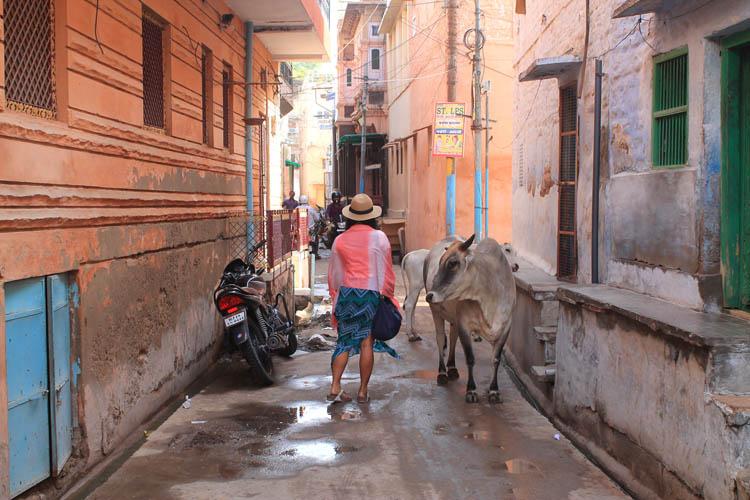 jodhpur-street-scenes
