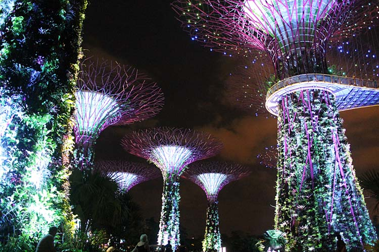 things-to-do-in-singapore-gardens-by-the-bay-light-show