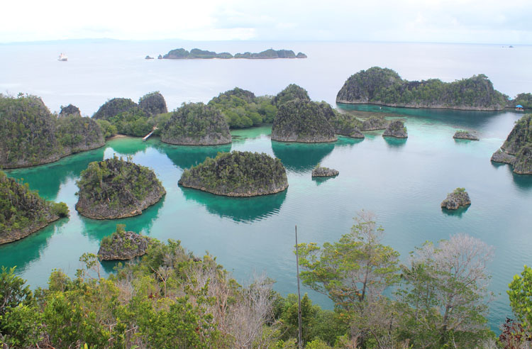 pianemo-viewpoint-raja-ampat