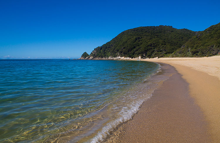 Anapai Bay, seen while on a day hike in Abel Tasman National Park, New Zealand