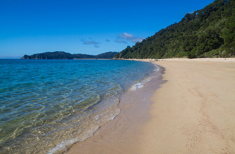 Hiking from Totaranui to Goat Bay, Abel Tasman National Park, New Zealand