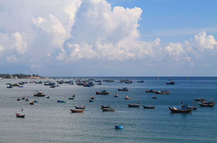 The Mui Ne sand dunes tour: Fishing boats in the harbour