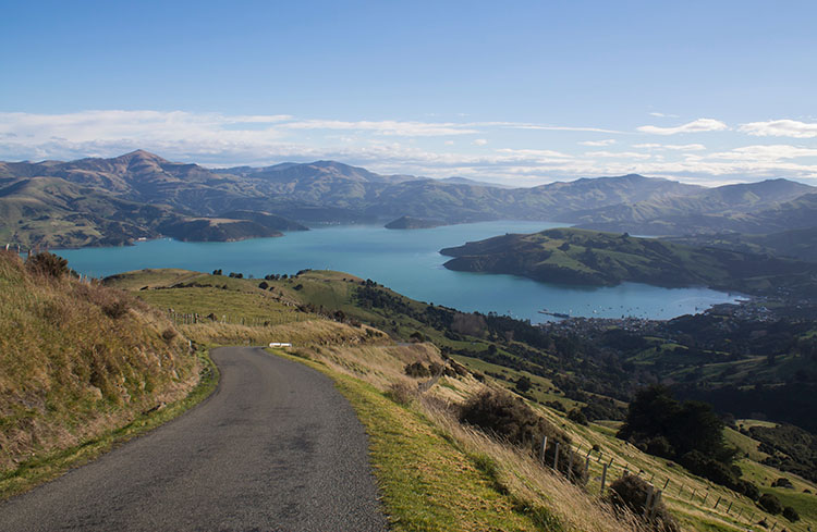 Things to do in Christchurch, New Zealand -- A day trip to Akaroa