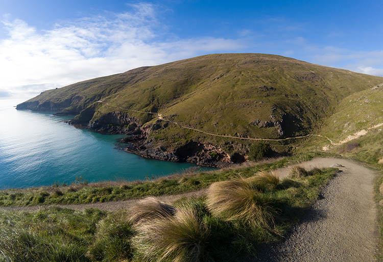 Things to do in Christchurch, New Zealand -- Hiking at Godley Head