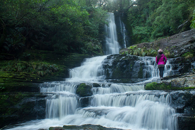 Two week New Zealand itinerary: McLean Falls, the Catlins