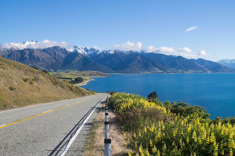 Wanaka To The West Coast Driving One Of New Zealand S Most Scenic Roads