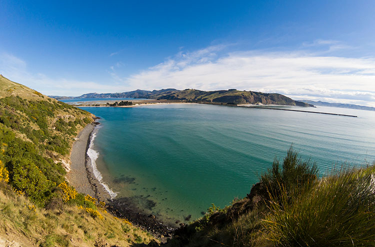Why Dunedin is New Zealand's Coolest, Best Looking City