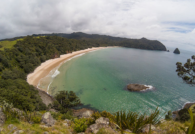 Two week New Zealand itinerary: New Chums Beach