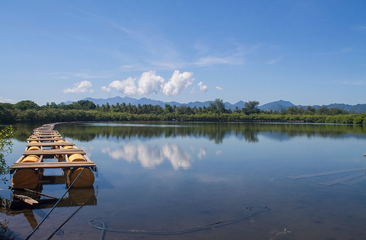 The interior of Gili Meno, Indonesia