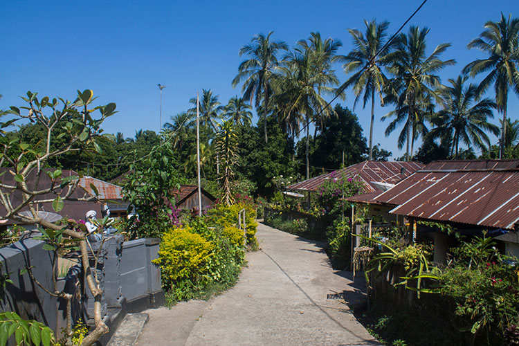 Things to do in Munduk, Bali -- see a rural village