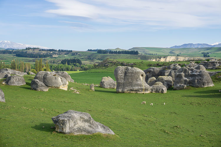Two week New Zealand itinerary: Elephant Rocks