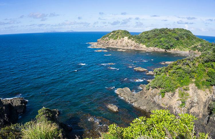 Headland Track from Matapouri Bay to Whale Bay, Tutukaka Coast, New Zealand