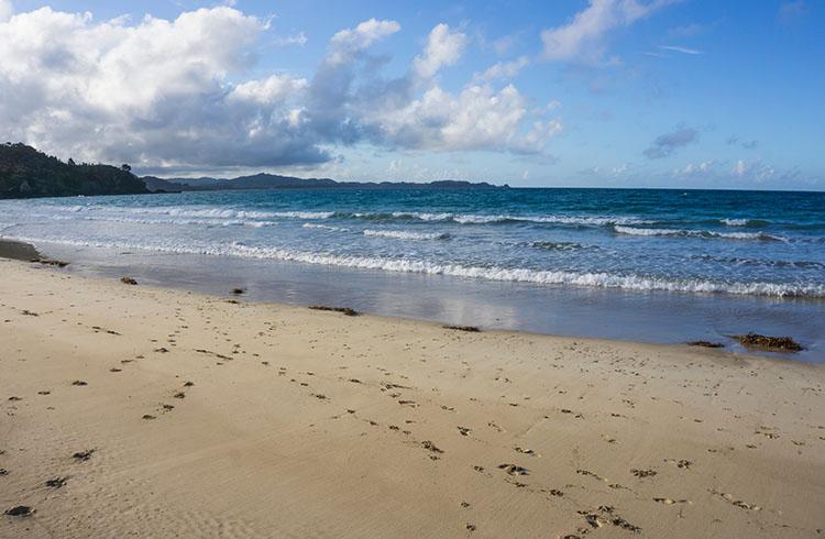 Sandy Bay, Tutukaka Coast, New Zealand