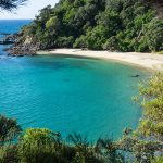 Matapouri Bay / Whale Bay: Exploring the Tutukaka Coast, New Zealand