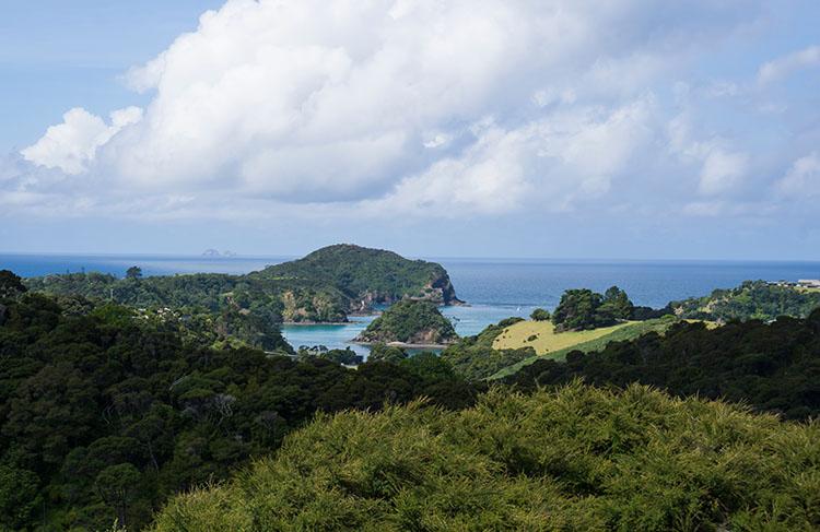 A Tutukaka Coast viewpoint, Northland, New Zealand