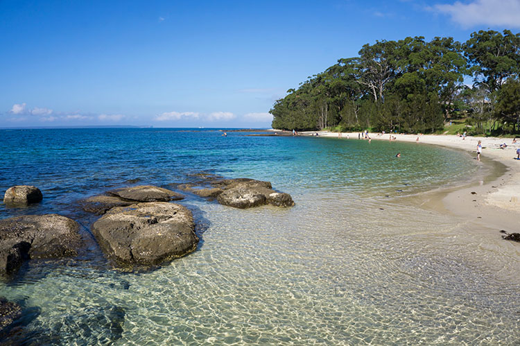 Things to do in Huskisson -- Shark Net Beach