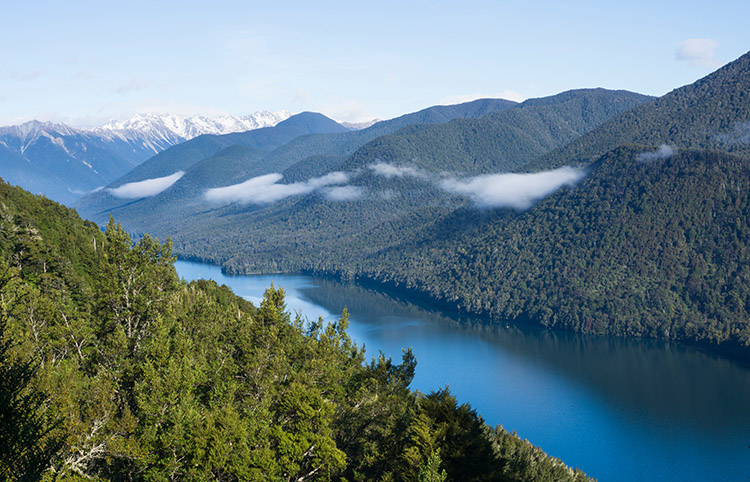 5 New Zealand Travel Alternatives for Your Cancelled Overseas Trip