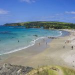 A Day Trip to Anchor Bay (Tawharanui Regional Park), One of the Best Beaches Near Auckland