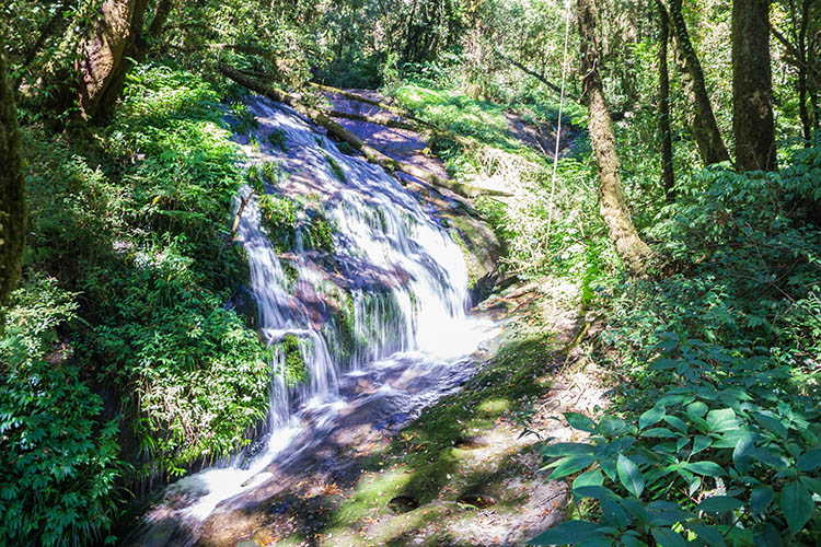 A waterfall on the Kew Mae Pan Nature Trail, Chiang Mai, Thailand
