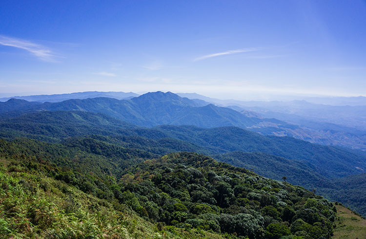 View from Kew Mae Pan hike, Doi Inthanon, Thailand
