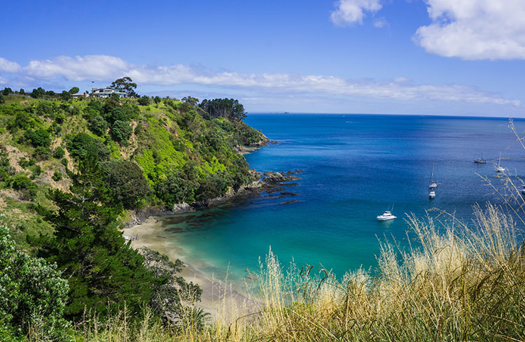 11 of the Best Things to Do on Waiheke Island (And Is It Only for Wine Drinkers?)