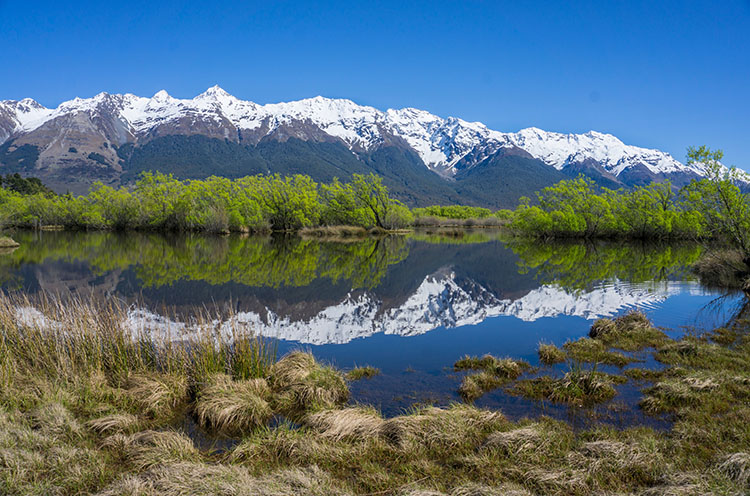 The Best Things to Do in New Zealand: 12 Awesome NZ Experiences