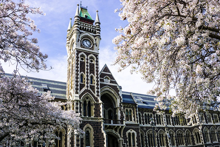 New Zealand in Spring: Travel Tips